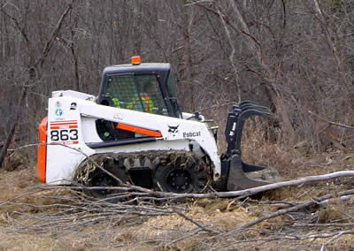 Man in Bobcat clearing brush